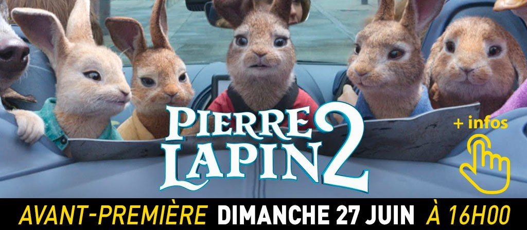 actualité AVP Lapin 2